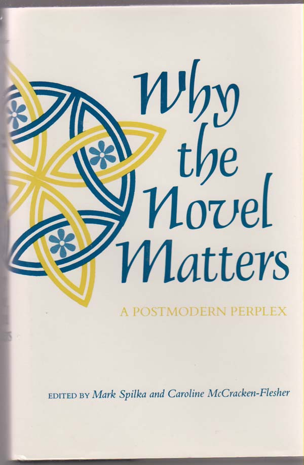 Image for Why the Novel Matters: a Postmodern Perplex