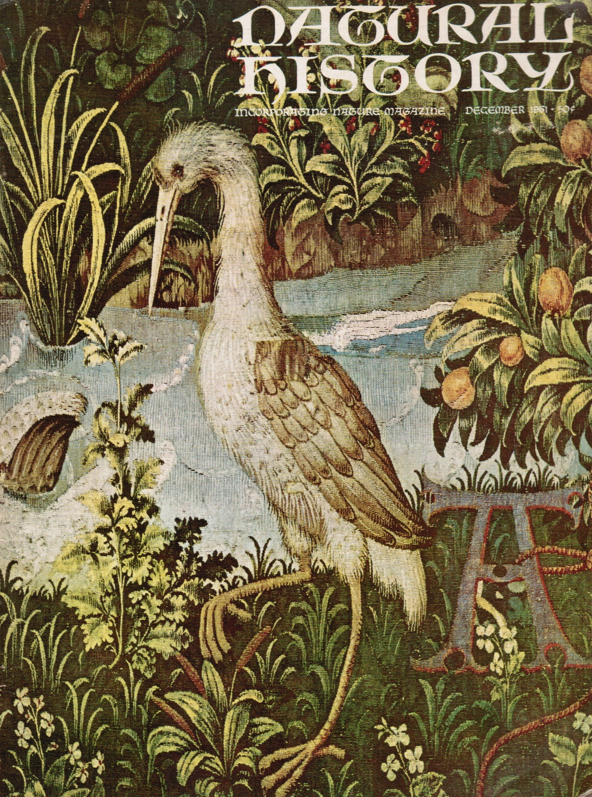 Image for Natural History Incorporating Nature Magazine: December 1961 Heron (Cover) the Hunt of the Unicorn