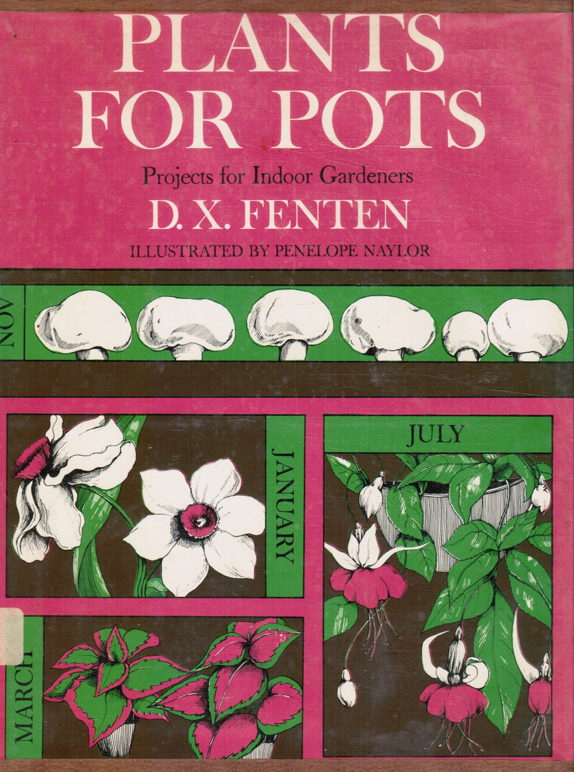 Image for Plants for Pots, Project for Indoor Gardeners