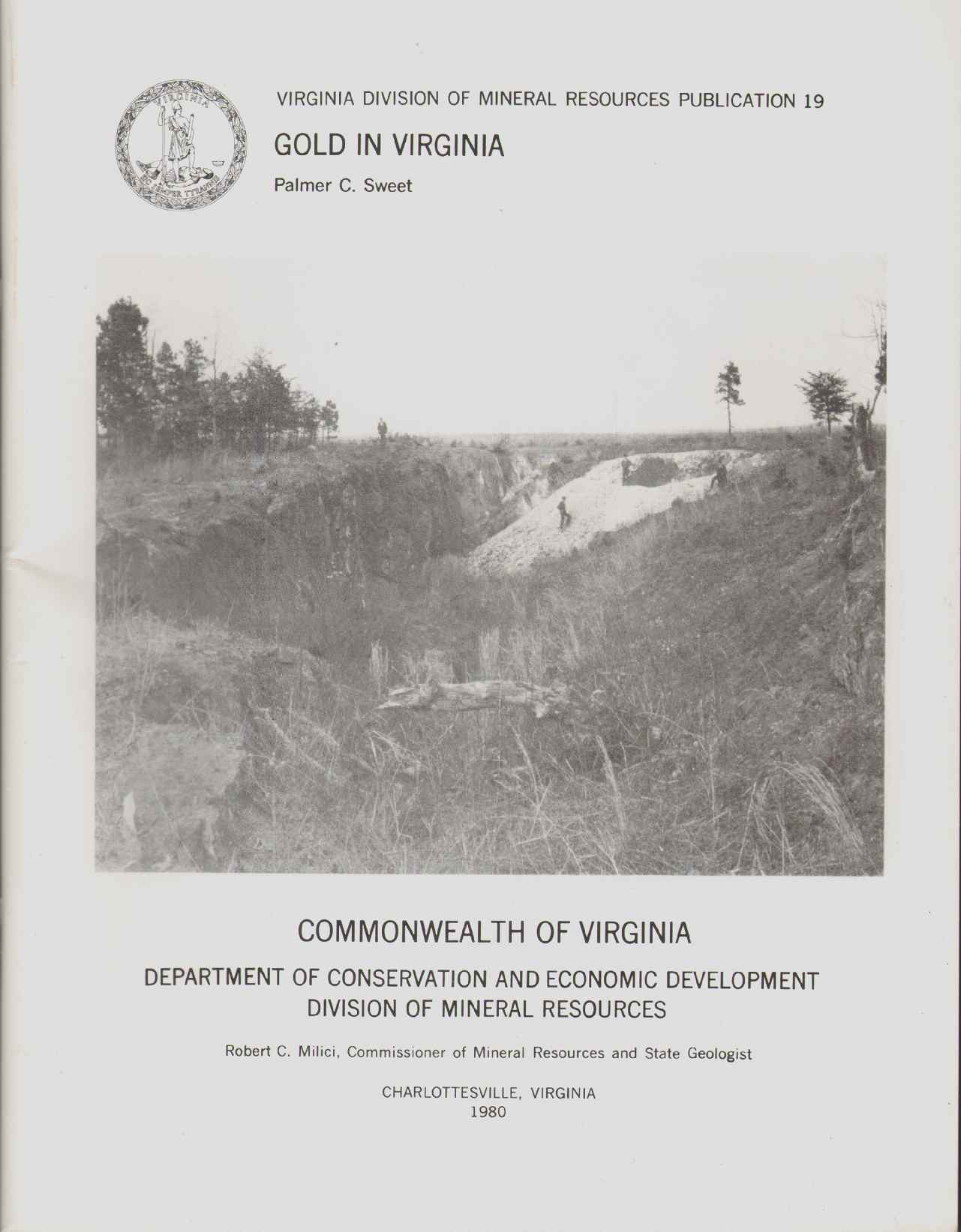Image for GOLD IN VIRGINIA Virginia Division of Mineral Resources Publication 19