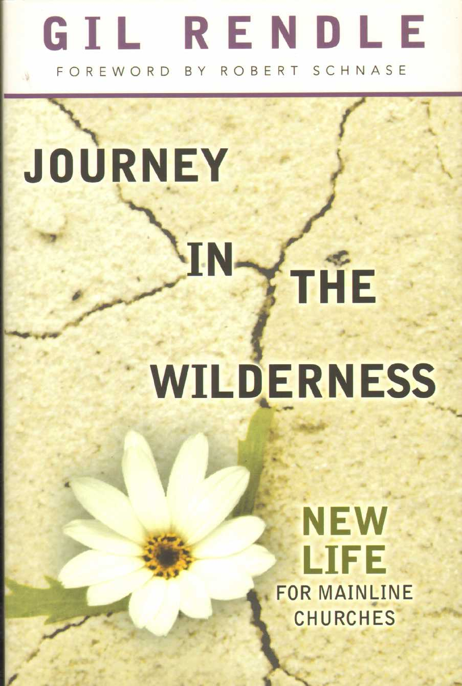 Image for JOURNEY IN THE WILDERNESS New Life for Mainline Churches