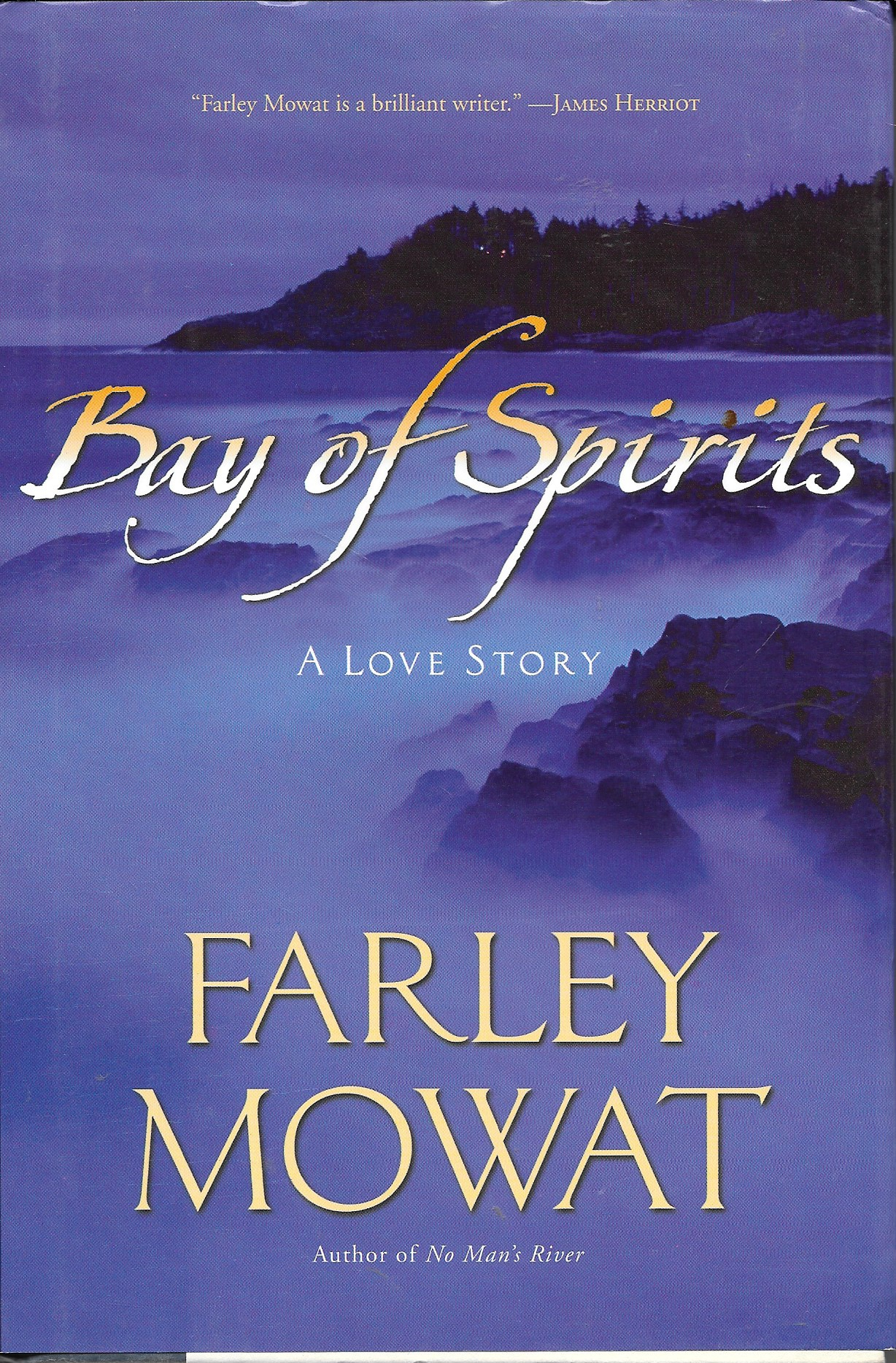 Image for Bay Of Spirits A Love Story