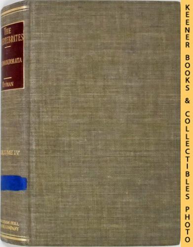 Image for The Invertebrates, Volume IV (4): Echniodermata, The Coelomate Bilateria