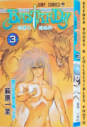 Image for Bastard!!, Heavy Metal - Dark Fantasy, Vol. 3 / Basutado!! Ankoku no Hakaishin (The Dark Rebel Armies: The Adolescent): In Japanese: Bastard!! Japanese Manga Series