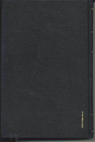 Image for A Rebel War Clerk's Diary, Volume II