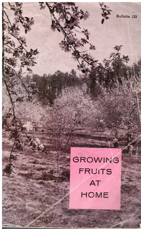 Image for Growing Fruits At Home