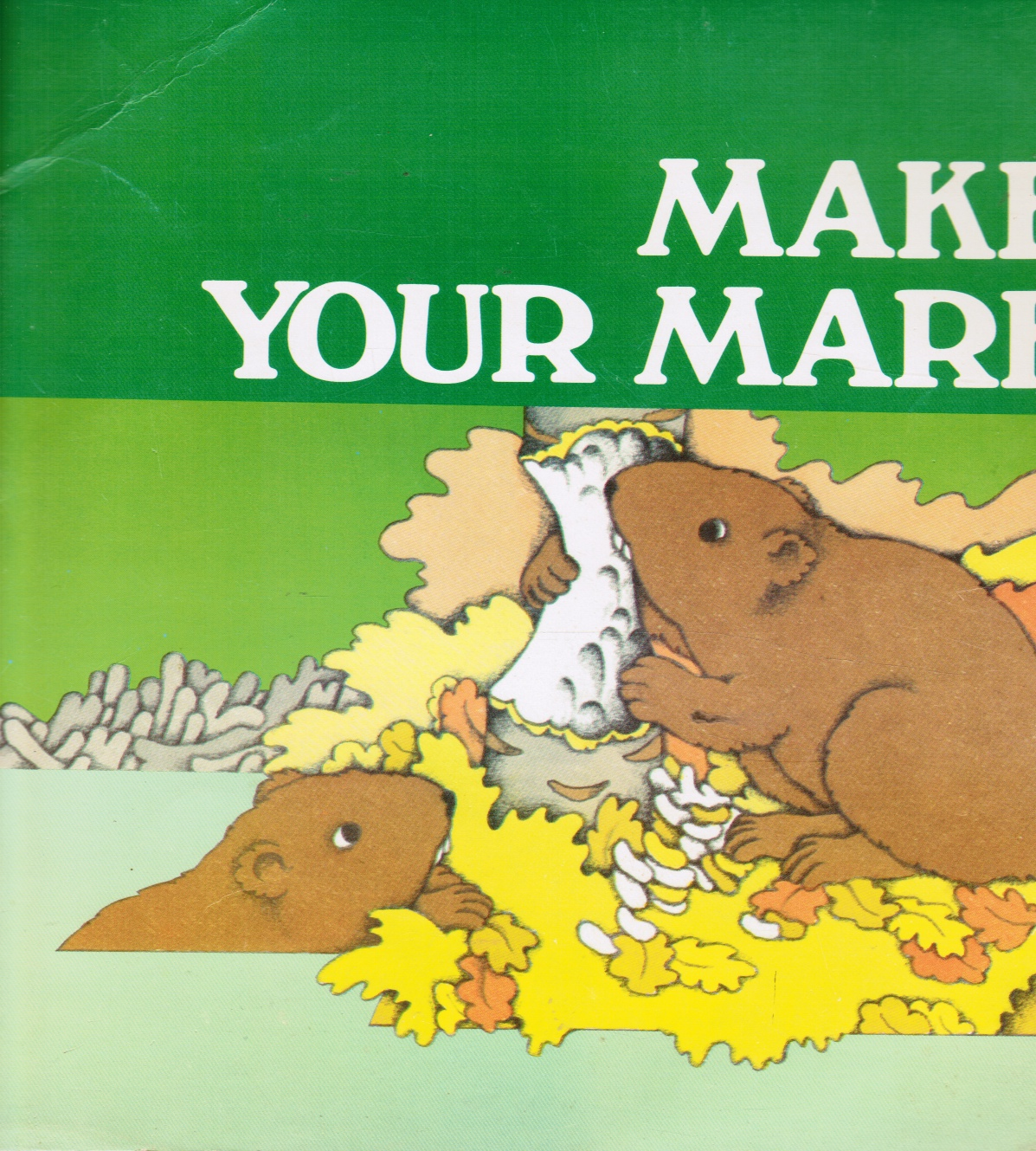 Image for Make Your Mark: Series R : Level 2