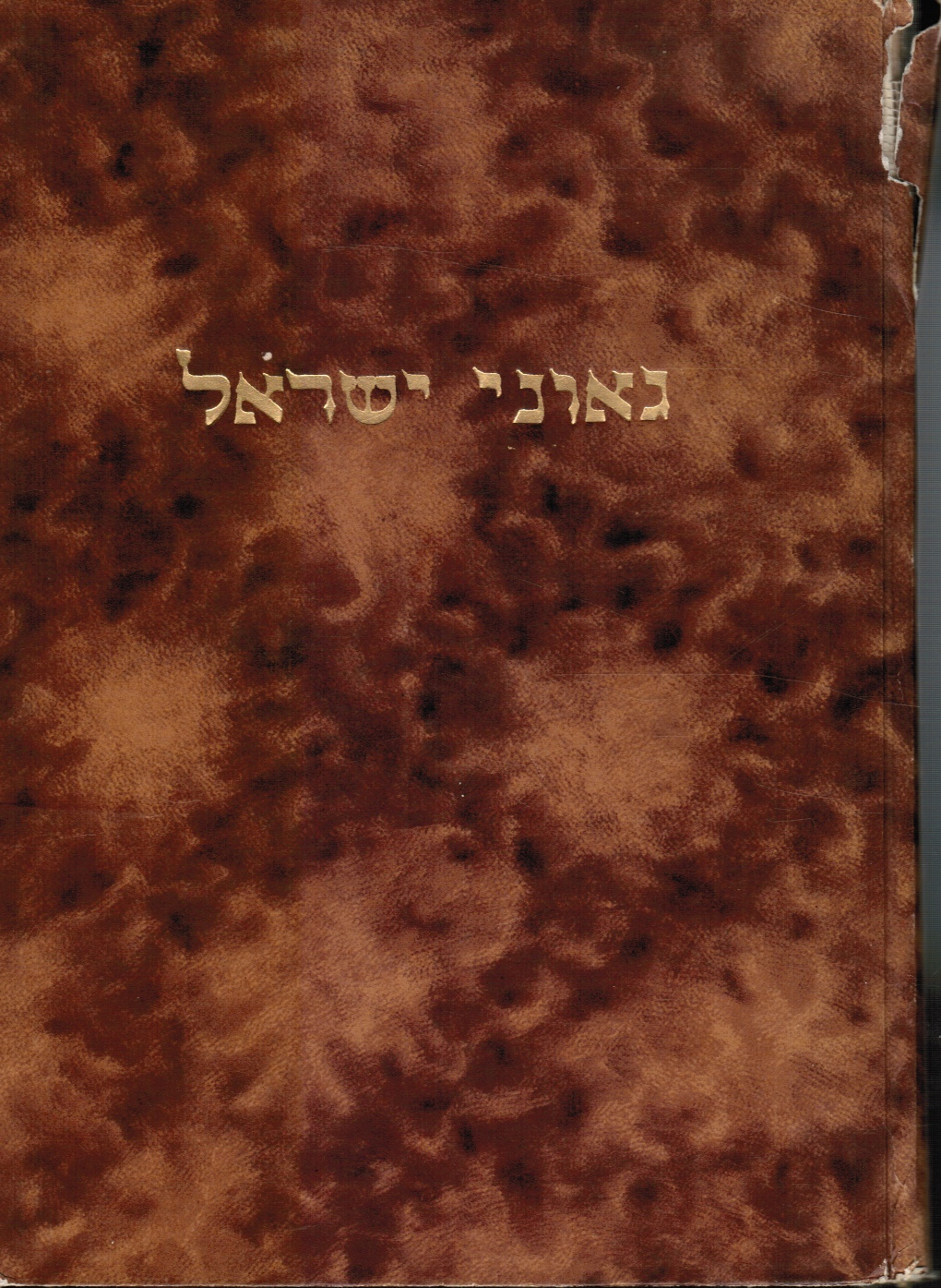 Image for Ge'one Yisrael: Rishonim Va-Aharonim: Toldot Hayehem