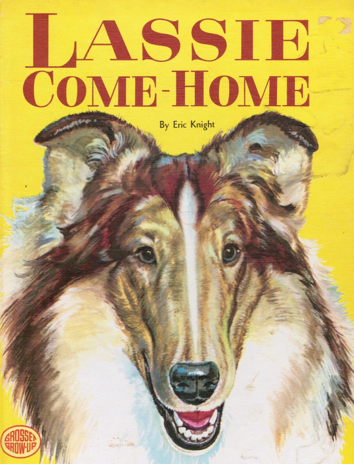 Image for Lassie Come-Home