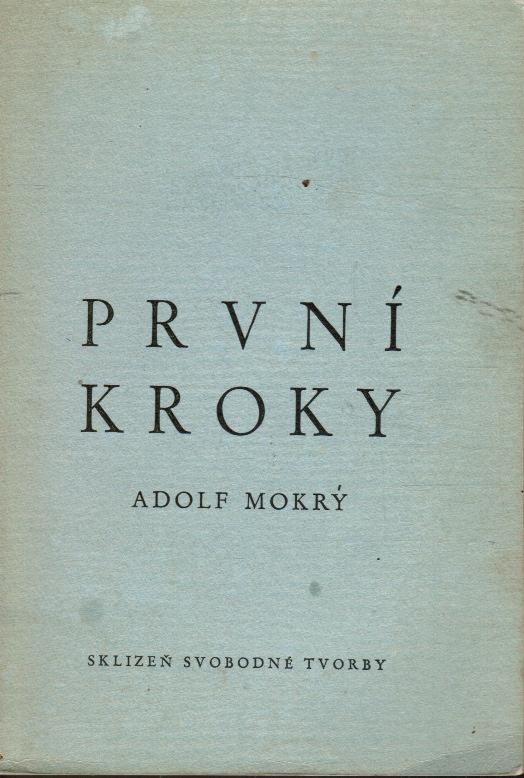 Image for Prvni Kroky