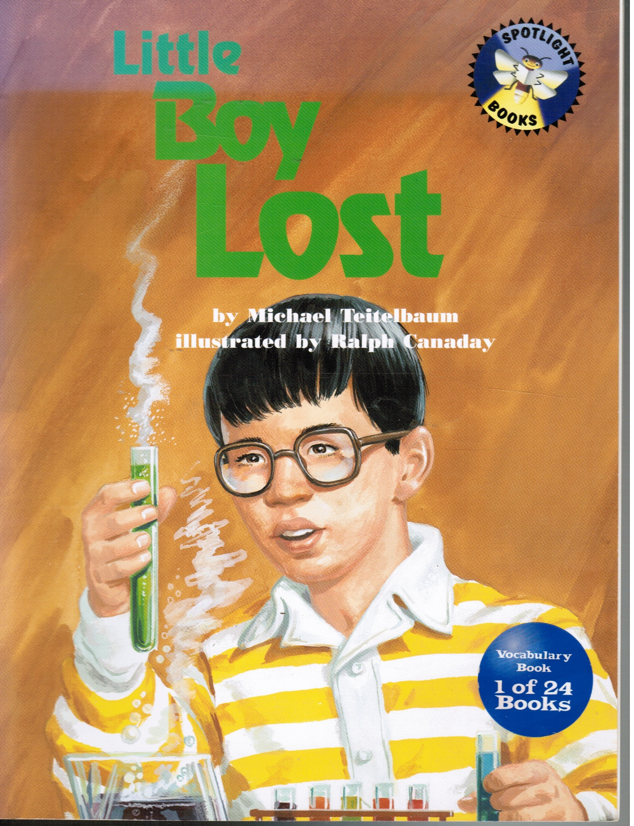 Image for Little Boy Lost
