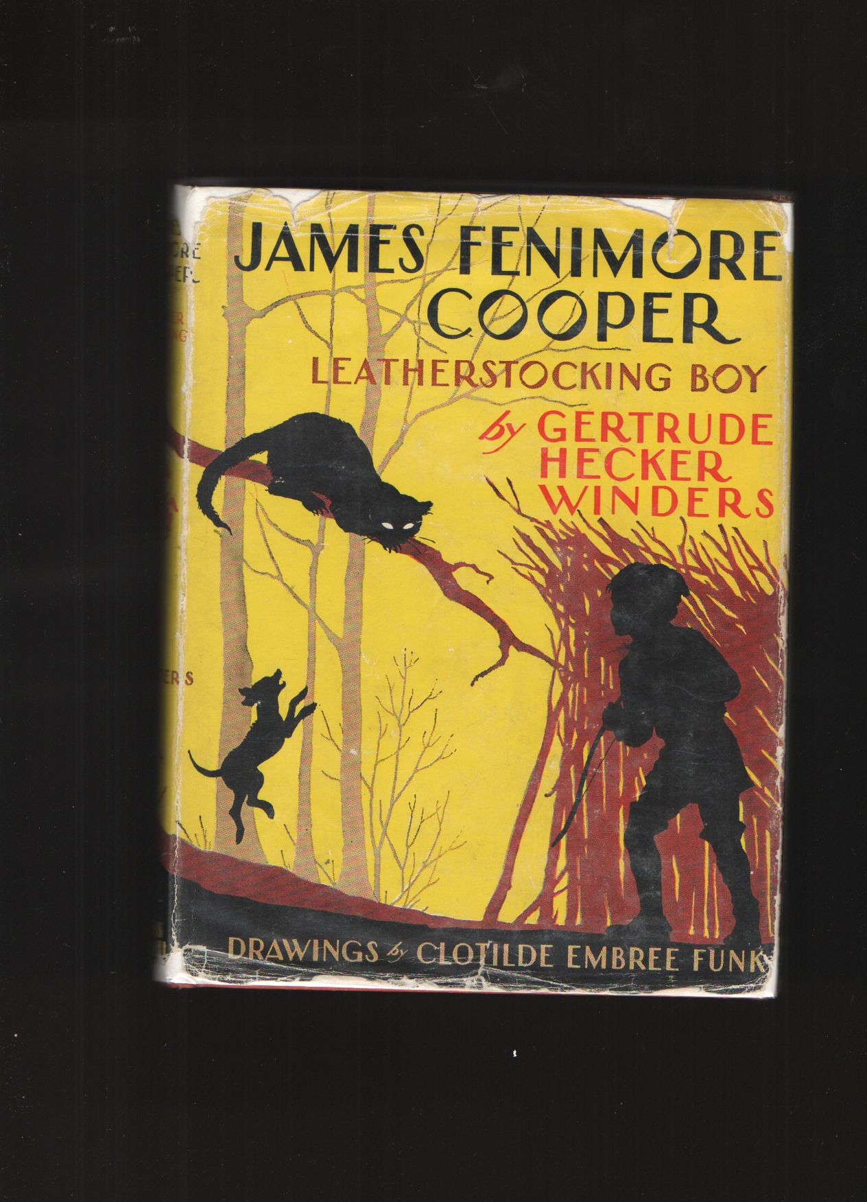 Image for James Fenimore Cooper Leatherstocking Boy