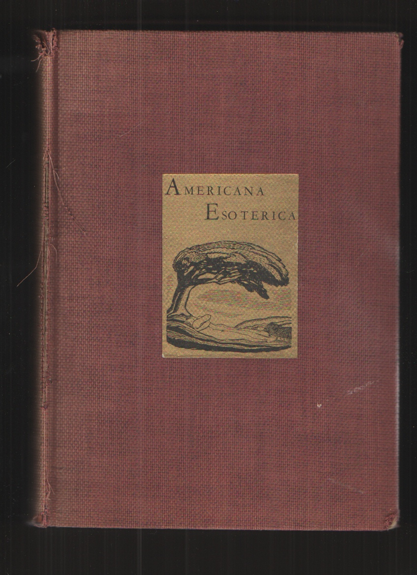 Image for Americana Esoterica