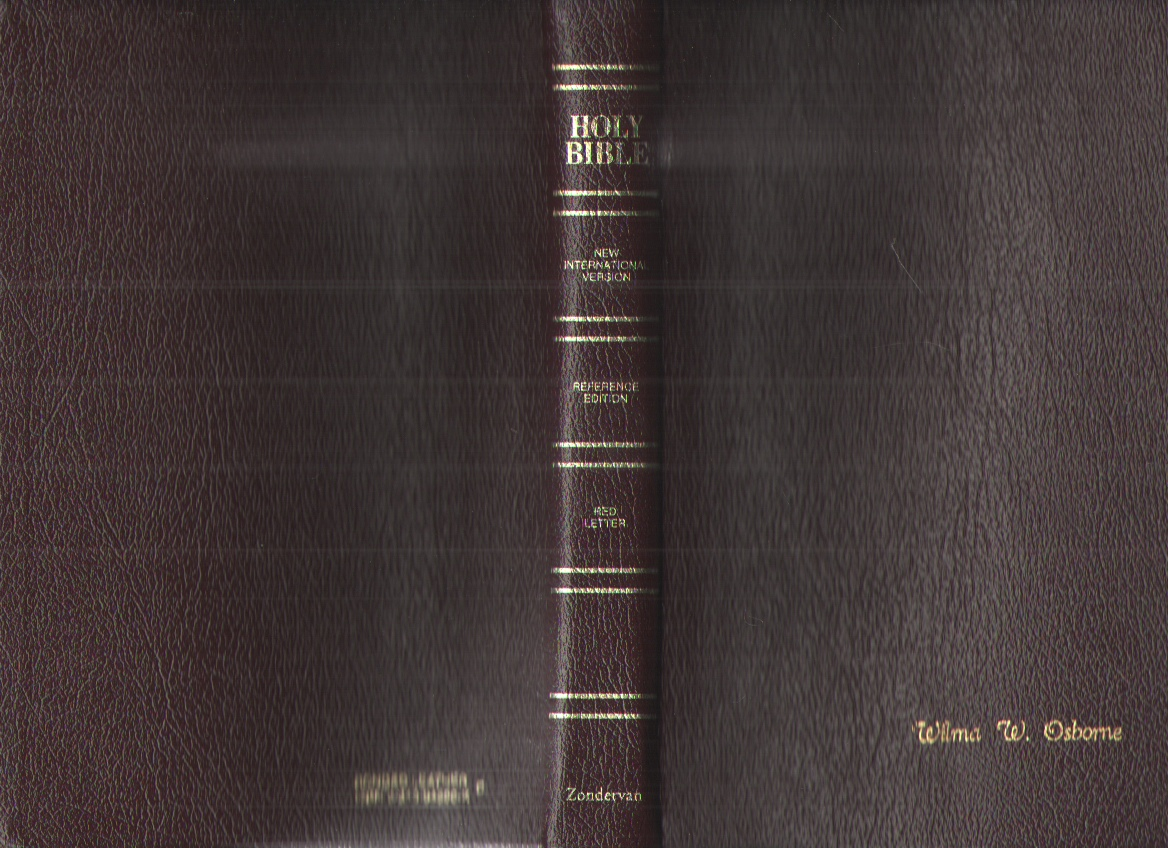 Image for The Holy Bible, New International Version, Red Letter Reference Edition, Thumb Indexed