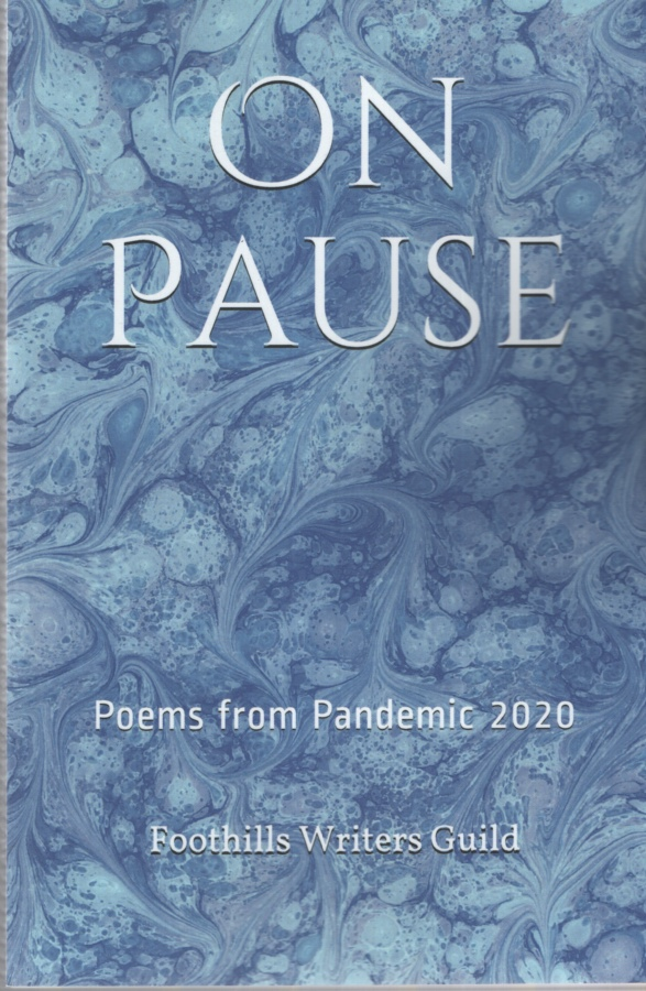 Image for ON PAUSE Poems from the Pandemic 2020