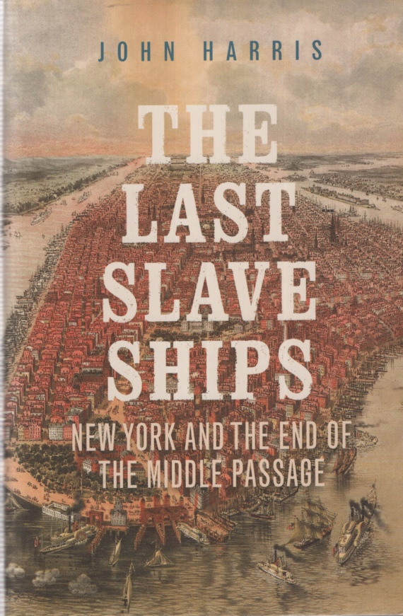 Image for THE LAST SLAVE SHIPS
