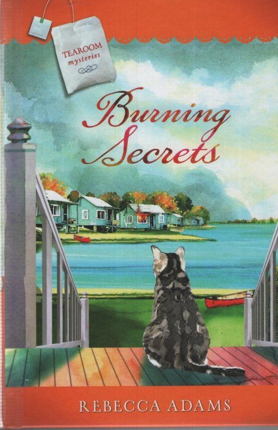 Image for BURNING SECRETS