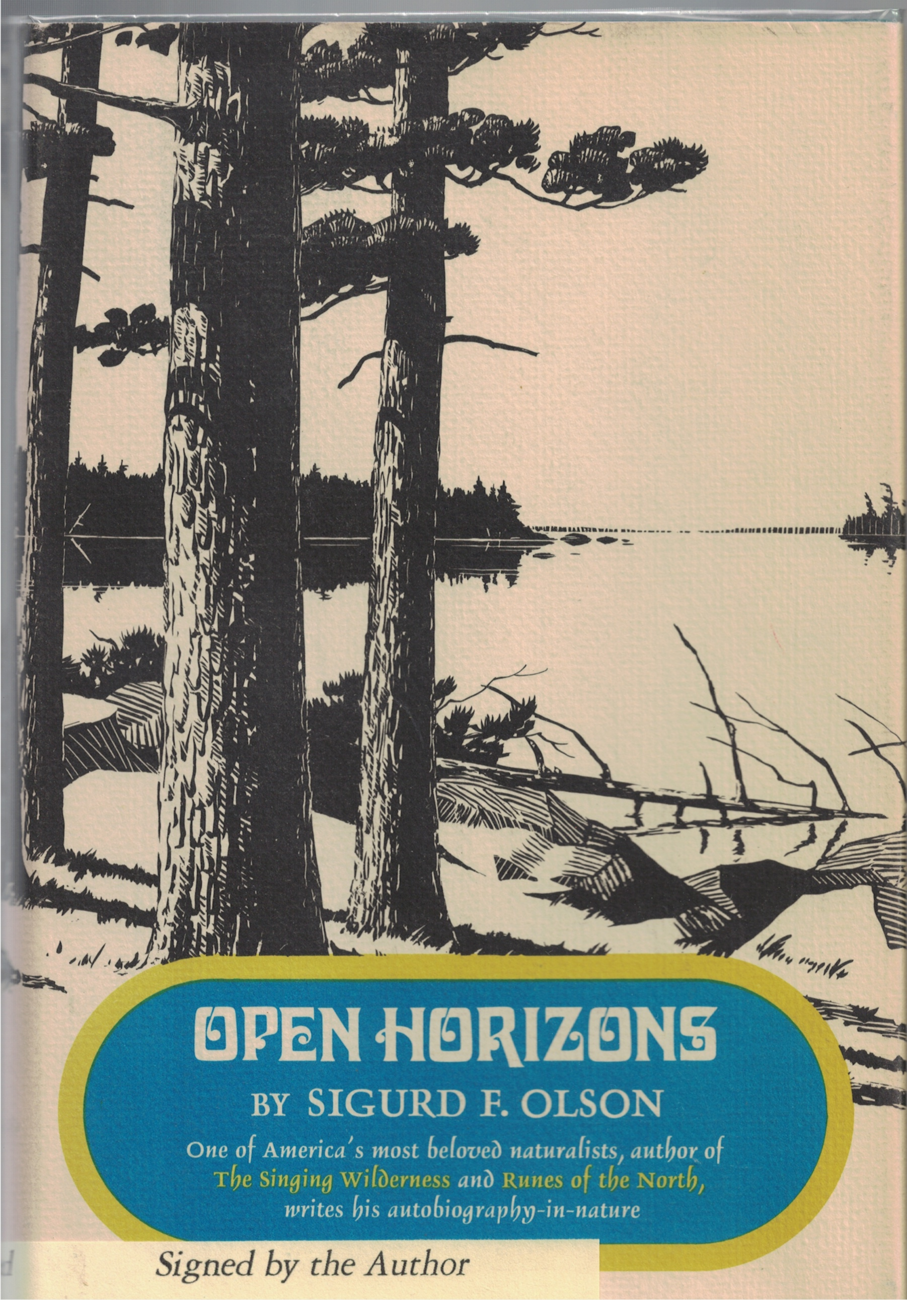 Image for Open Horizons