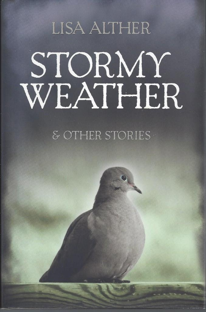 Image for Stormy Weather & Other Stories