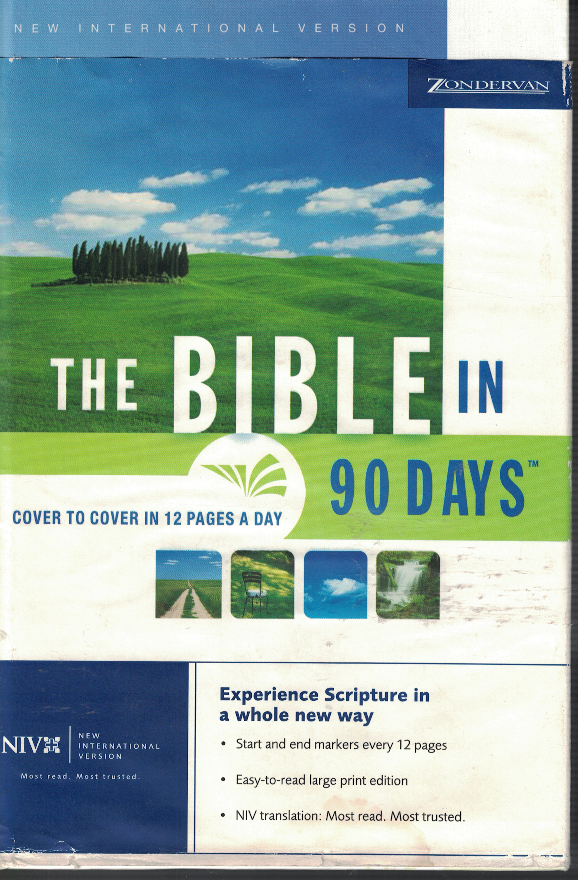 Image for Bible In 90 Days - New International Version Cover to Cover in 12 Pages a Day